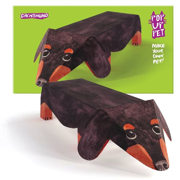 Pop Up Pet Dachshund, Ginger Tom, Pug Or Silver Tabby