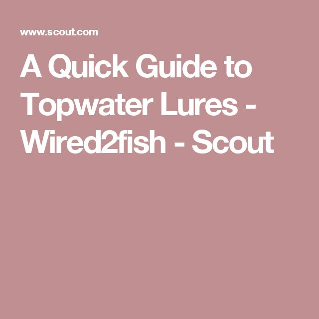 A Quick Guide to Topwater Lures - Wired2fish - Scout