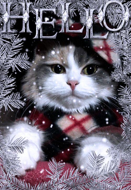 die besten 25 hallo kitty weihnachten ideen auf pinterest. Black Bedroom Furniture Sets. Home Design Ideas