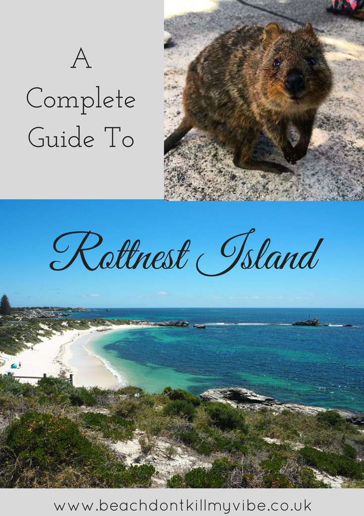 The perfect day trip from Perth in WA. Home to the legendary Quokka  ... how to explore Rottnest Island! A must do on any trip to Australia!