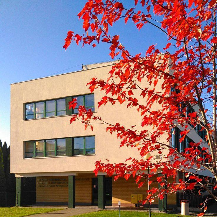 #budynek35 #jesień #czerwonedrzewo #czerwoneliście #ogrodnictwo #zlotapolskajesien #złotapolskajesień #trocheslonca #trochęsłońca #WOBiAK #SGGW 🏬🍁🍁🍁 #building35 #autumn #fall #redtree #redleaves #horticulture #goldenautumn #sun #WULS