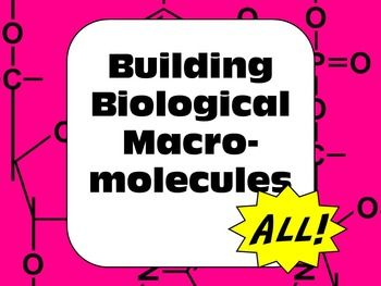 Senior/AP biology: Carbohydrates, Lipids, Proteins, and Nucleic Acids...all in one bundle. Guided questions, images are of structural formulas, final product valuable part of student notes.