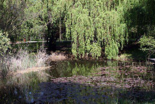 Jardin Botanique de l'Université de Strasbourg ...