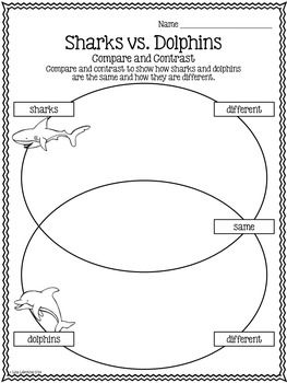 compare contrast essay sharks dolphins Whales and dolphins are mammals that belong to the order cetacea dolphin vs whale physiology by contrast, humpback whales have.