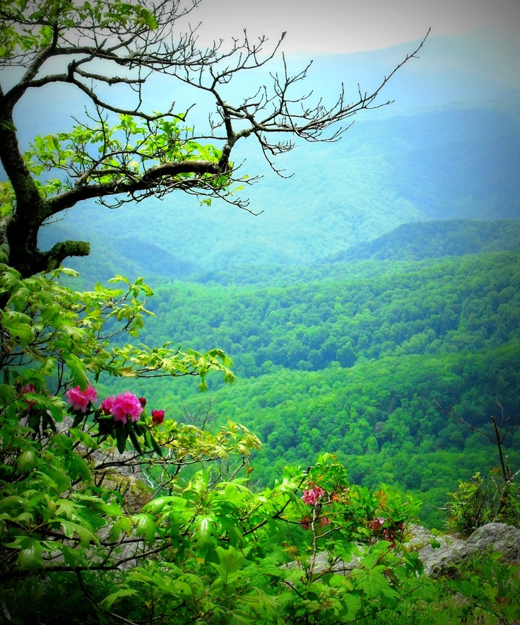 """Blowing Rock, NC Or """"Mitford"""" in the Jan Karon Books."""