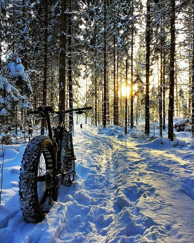 #Repost @fredrik_on_bike ・・・ Winter #brtrekbike #euescolhipedalar …