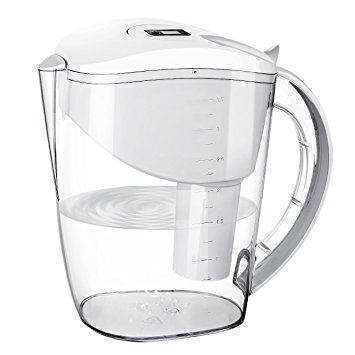 Water Filter Pitcher, HoLife Alkaline Water Pitcher with 1 Carbon Filter Cartridge 4.0 out of 5 stars    48 customer reviews  | 6 answered questions Price:	$47.99 Sale:	$29.99