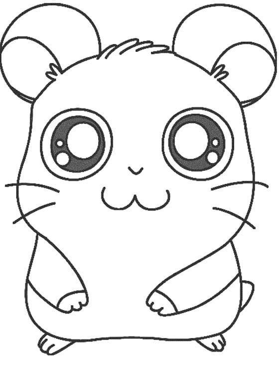 Printable Hamster Hamtaro Coloring Pages Activities for