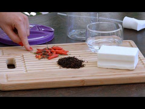Vídeo: Passo a passo para fazer o inseticida natural - Lar Natural