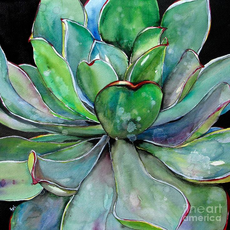 Green Agave Watercolor Painting by Fei Liu - Green Agave Watercolor Fine Art Prints and Posters for Sale