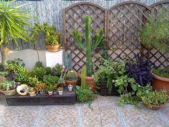 Pinterest the world s catalog of ideas - Jardines en terrazas ...
