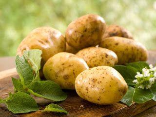 Огород, Дача, вырасти все без химии.: Посадка картофеля - когда и как сажать, сроки и сп...