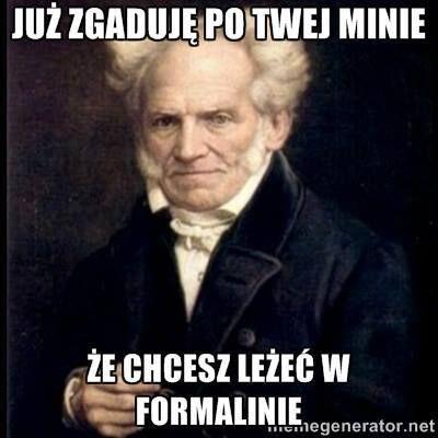 https://www.facebook.com/Arthur.Schopenhauer.memy/photos/a.1526610454304596.1073741828.1526599747639000/1576848179280823/?type=3