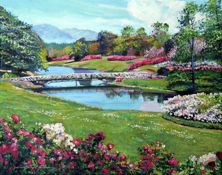 Spring Flower Park David Lloyd Glover