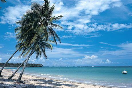 Google Image Result for http://images2.fanpop.com/images/photos/7700000/Bahia-Brazil-beaches-7739610-461-309.jpg