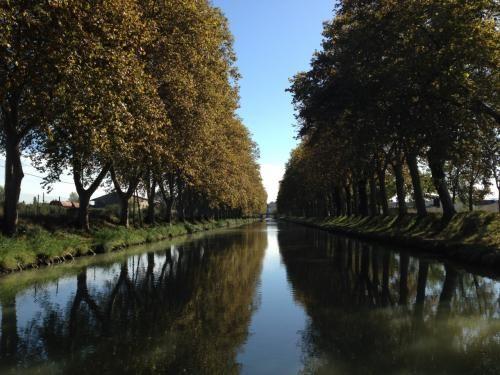 フランスの観光はカルカソンヌから始めました。<br />この街にはヨーロッパ最大級の中世の城塞(シテ)があり、歴史的価値の高いミディ運河が流れています。<br />フランス国内ではモン・サン=ミシェルに次ぐ年間来訪者数を誇る一大観光名所となっているといいます。<br /><br />■旅程<br />【9/26関空フライト→27.28ローマ→29オルヴィエート、30チヴィタ・ディ・ヴァニョレージョ→10/1.2.3フィレンツェ、4サン・ジミニャーノ→5.6ベネツィア→7.8.9バルセロナ、10モンセラット→11フィゲラス→12.13カルカソンヌ→14.15.16アルル→17.18.19.20.21.22サント・マリー・ド・ラ・メール(18.19秋の巡礼祭にあわせて滞在)→23リヨン、24オートリーヴ「シュヴァルの理想宮」、25.26リヨン→27.28.29ミラノ→30.31帰国】<br />