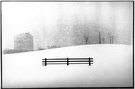 Uzzle Burk: Winter Park, Central Park, New York, 2000