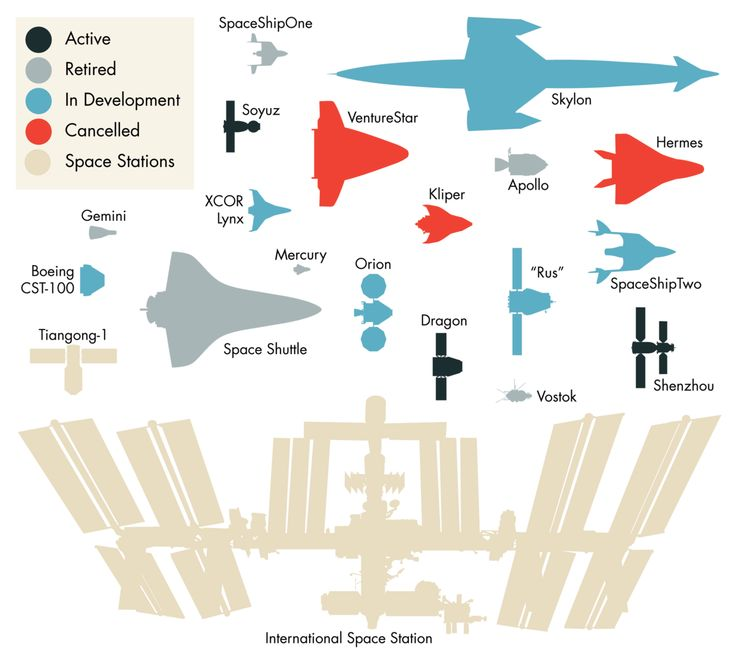 Notable Spaceships by supernovacondensate: Shown to scale. #Infographic #Spaceships #supernovacondensateReal Life, Spaceships, Notable Spacecraft, Spaces Ships, Spaces Stations, Funny Science, Infographic, Spaces Crafts, Spaces Vehicle