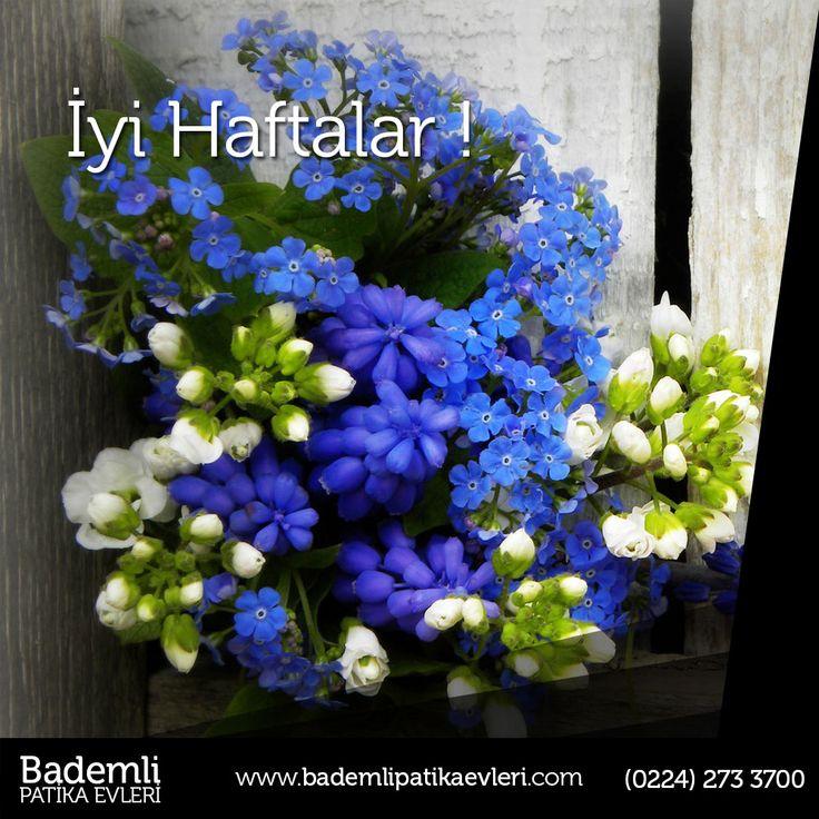 Herkese iyi haftalar!  Bahçede çicek yetiştirmek sizin için de bir tutku ise, bahçeli bir villa tam size göre :)   www.bademlipatikaevleri.com   #bursa #bademli #ev #villa #müstakil #daire #yatırım #hayat #site #bahçe #iyihaftalar #çiçek  Bademli Mah. Eski Mudanya Cad. No:175 Mudanya / BURSA info@bademlipatikaevleri.com  // (0224) 273 3700  https://www.facebook.com/bademlipatikaevleri https://twitter.com/patikaevleri https://tr.pinterest.com/patikaevleri