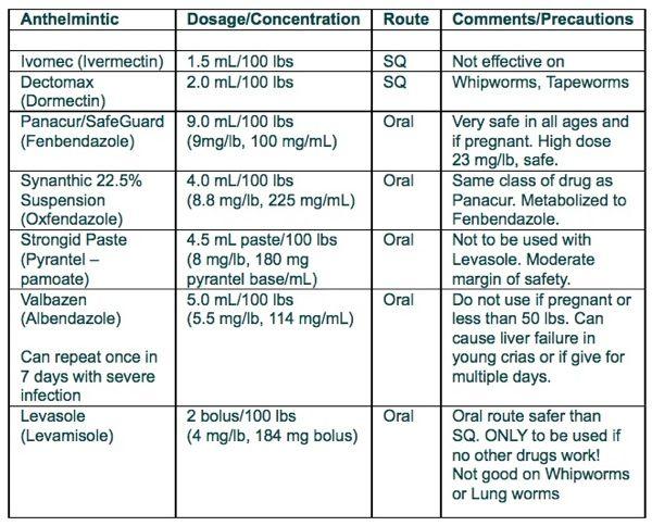 List Of Best Dog Dewormer Philippines