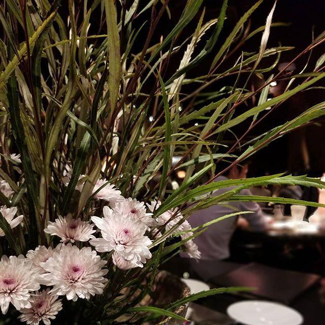 新宿Refrain 今週の生花 ・スプレーマム ・グレビレア スプレニフォリア 【スプレーマムの花言葉】 ・逆境の中で元気 ・清らかな愛 ・高潔 ・私はあなたを愛する ・謙遜 なんて素敵な言葉ばかりなのでしょうか! スプレーマムは中国、アメリカ、ヨーロッパ原産の耐寒性多年草です。 日本での栽培が本格的になったのは1975年頃とされます。 キクといえば日本ではなじみの深い花ですが、スプレーマム(spray mum)は、アメリカに渡って改良された園芸品種が花色や花形ともに洋風なイメージをもって里帰りしてきた花で、一本の茎に何輪もの花を放射状に揃って咲かせる西洋菊のことです。 Follow us on!! →@spainbarrefrain #新宿Refrain#スペインバル#バル #お洒落#スペイン#パーティー #スペイン料理#新宿#ディナー #ワイン#カクテル#酒 #女子会#飲み会#ビール #パエリア#ラムチョップ #デート#肉#記念日 #party#bar#dinner #wine#cocktail#happy #paella#love #food#spain