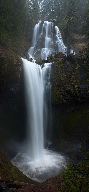 Falls Creek Falls Loop Hike - Hiking in Portland, Oregon and Washington -- Directions: http://www.localhikes.com/Hikes/Falls_Creek_0000.asp