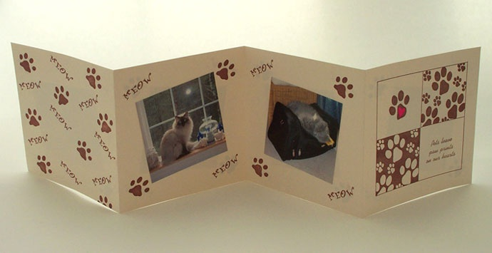 One side of the kitty brag book I made.