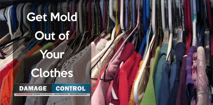 Removing Mold From Your Clothes And Curtains Molding Get Rid Of