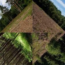 Doug Aitken photography - Relationship to landscape.