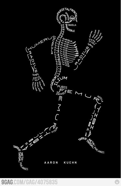 A great way of remembering the joints and what they are called. This would have helped me out a lot when i was studying beauty therapy!