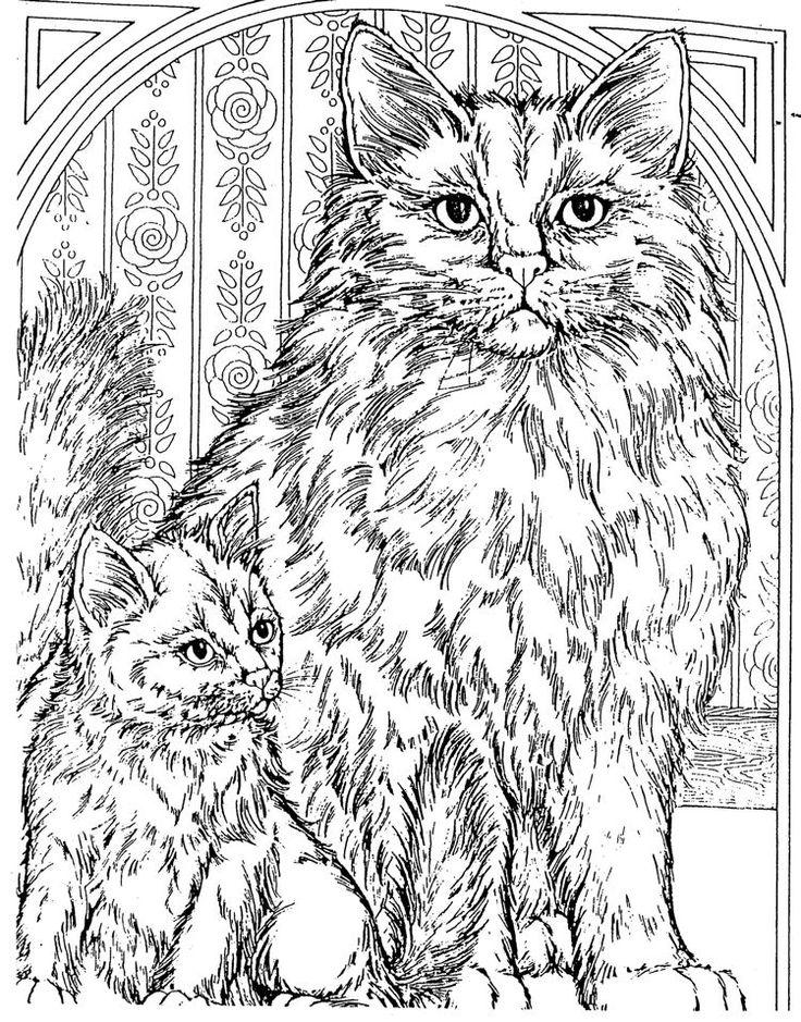 coloring for adults kleuren voor volwassenen - Coloring Pictures Of Cats