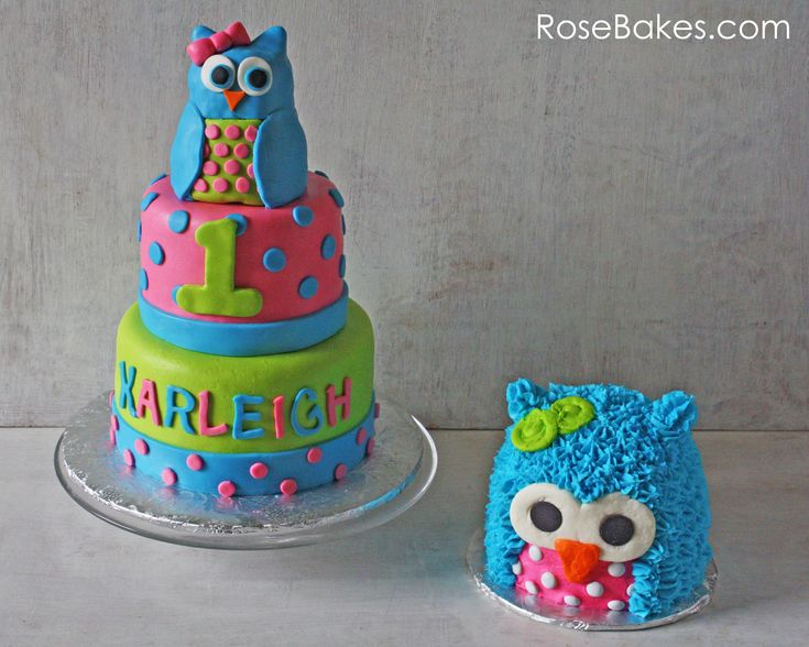 Bright Polka Dots Owl Cake and Owl Smash Cake - Rose Bakes