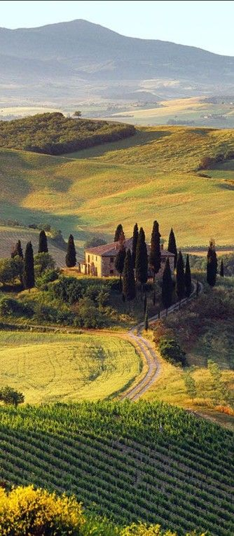 Villa I Pini near the medieval town of San Gimignano in Tuscany,