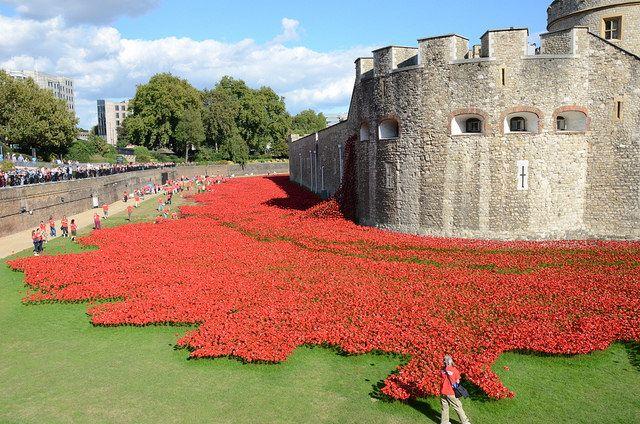 Remembrance day en Londres