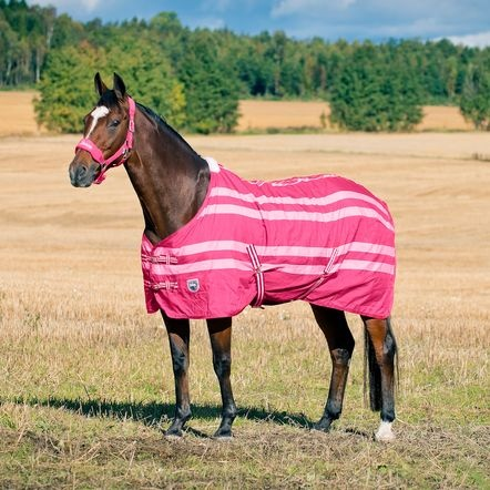 Horze Brighton Polyester Blanket with Fleece Lining | For ...
