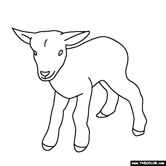 1000 Images About Animal Coloring Book On Pinterest