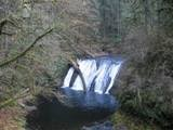 i have hiked silver falls. 4 hr hike and lived to complain about it LOL!