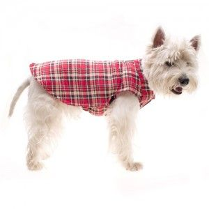 all-weather-coat-red-tartan