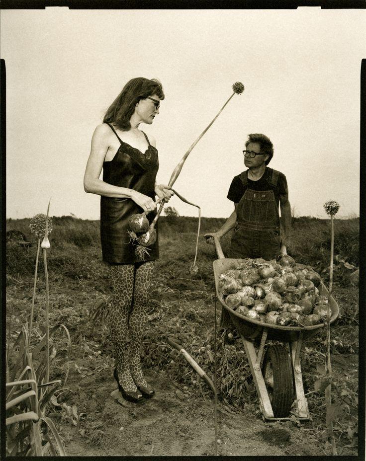 J. Шимон & J. Lindemann, урожай лука, Вайтло, штат Висконсин, 2009