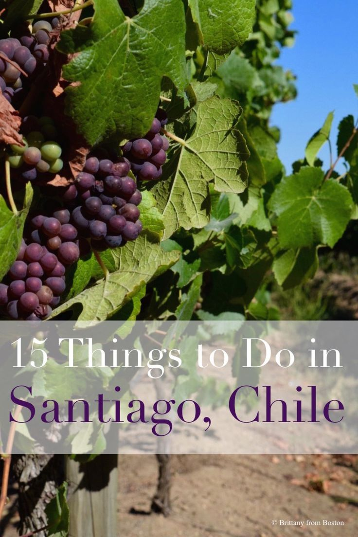 Top 15 Things to do in Santiago, Chile // Brittany from Boston