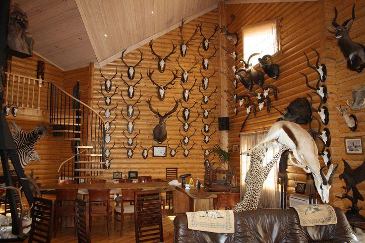 Interior Pabellón de caza. Los techos son de doble altura...Dentro del pabellón se puede ver hasta una jirafa.  *Nosotros NO somos partidarios de la caza. Fué un trabajo...