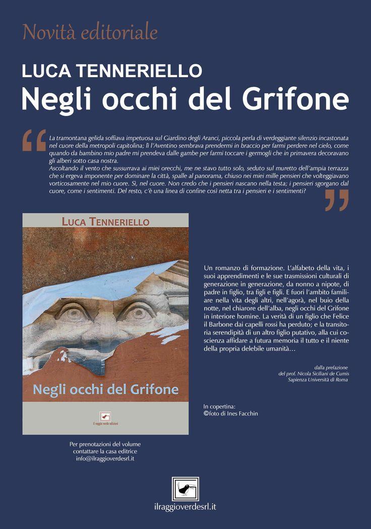 Negli occhi del Grifone è il primo romanzo di Luca Tenneriello edito da Il Raggio Verde edizioni.