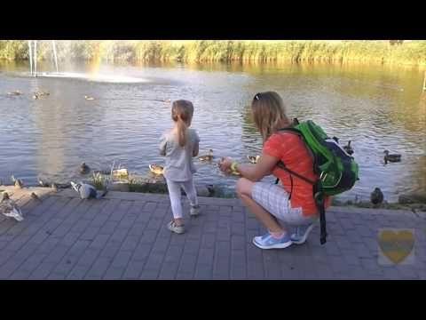 Моя Украина - Запорожские зарисовки-3, ,путешествия по стране, туризм, архитектура. - YouTube