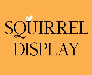 Squirrel Display by Kenjiboy (via Creattica)