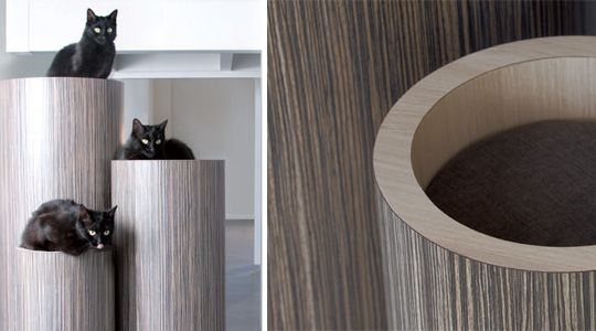 Modern cat tree house. I feel like I could make this with PVC pipe (either painted or wrapped in a cute fabric)