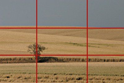 Règle des tiers : remarquez comme le sujet principal est placé sur un point de force de l'image