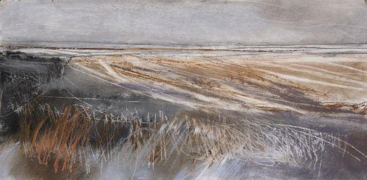 Janine Baldwin   Pastel, Charcoal & Graphite on paper