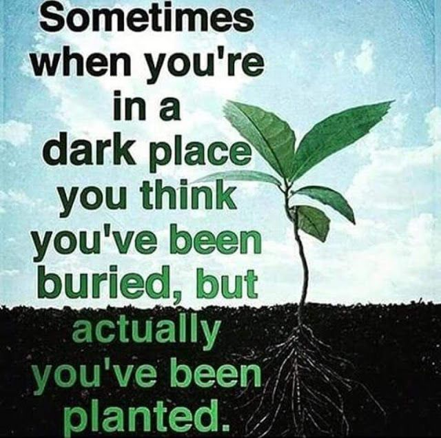 Sometimes when you are in a dark place you think you have been buried, but actually you have been planted !