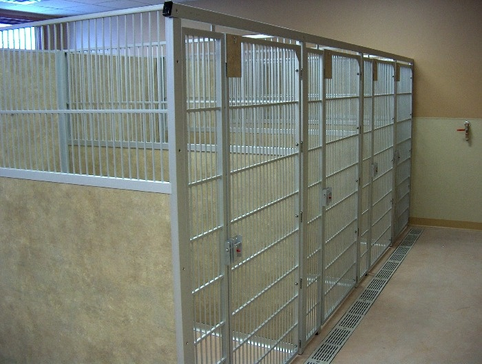 The 85 best images about Kennels on Pinterest For dogs, Dog
