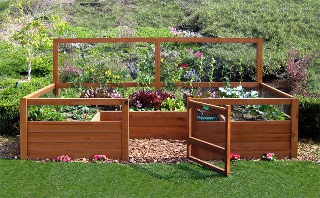 Raised Backyard Vegetable Garden Kit